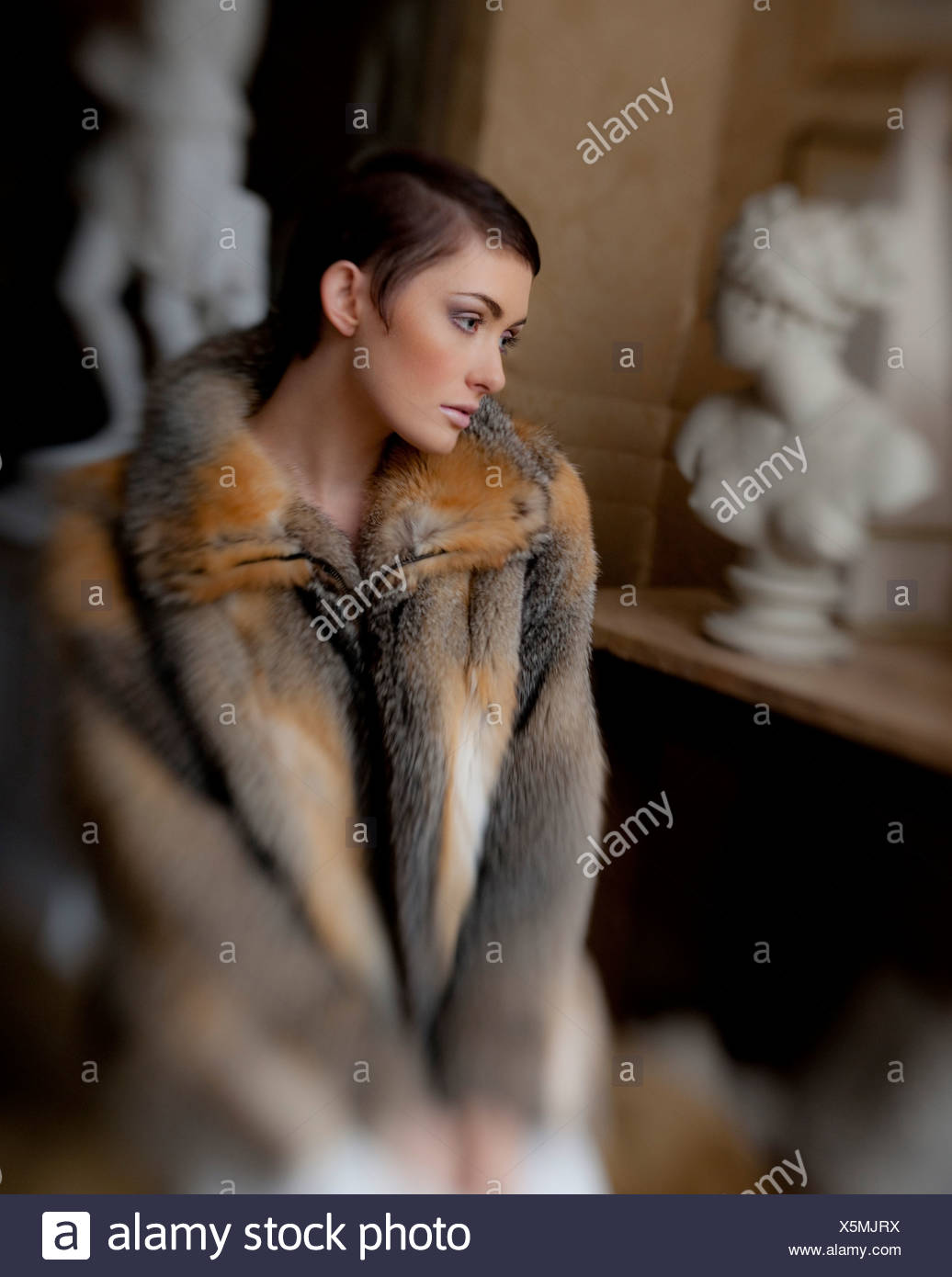 Woman Wearing A Fur Coat High Resolution Stock Photography and ...