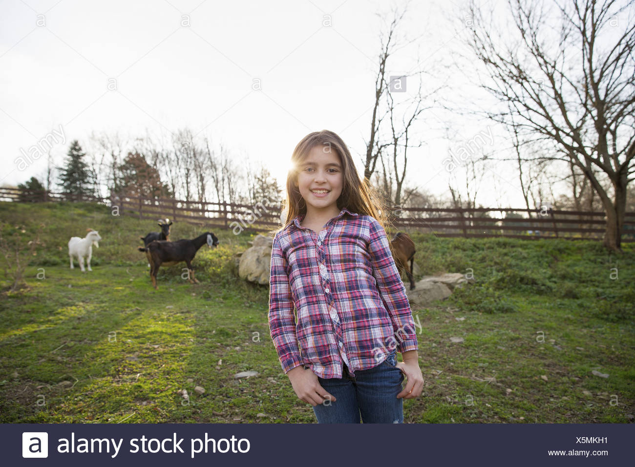 A child, a young girl in the goat paddock enclosure at an animal sanctuary. - Stock Image
