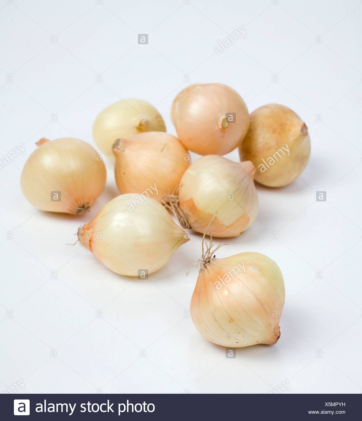Pearl onions - Stock Image