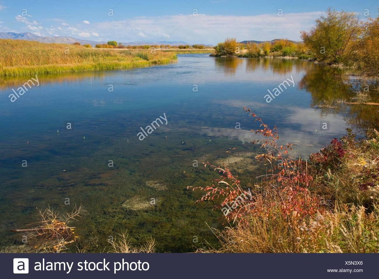Silver Creek, Silver Creek Preserve, Idaho. - Stock Image