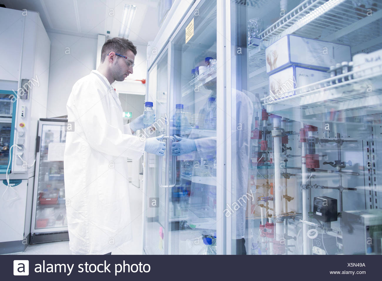 Scientist in microbiological lab opening fridge - Stock Image