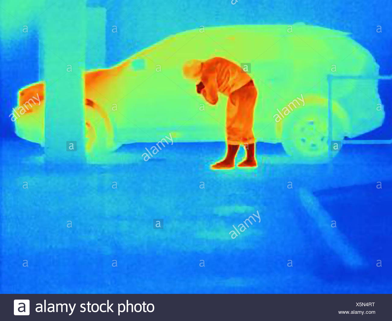 Thermal photograph of a burglar breaking into a car - Stock Image
