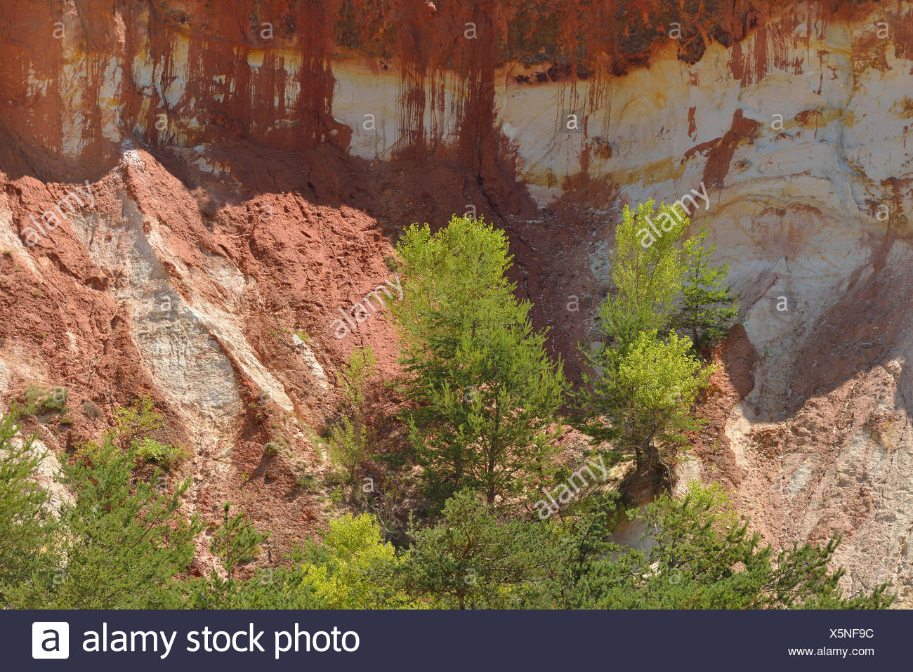 Europe, Roussillon, Vaucluse, Provence, France, ochre, rock, red, cliff, nature - Stock Image