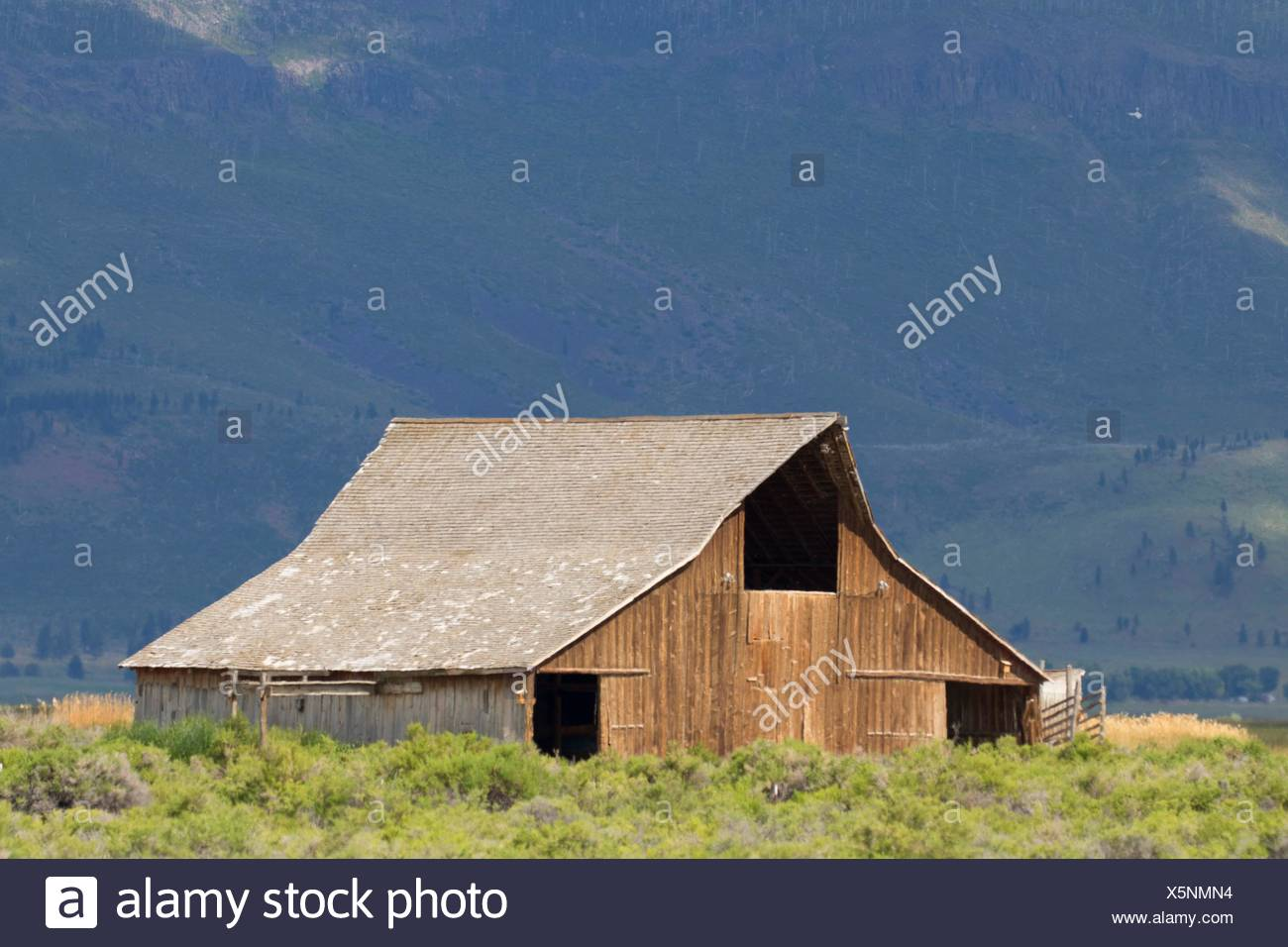 River Ranch barn, Summer Lake Wildlife Area, Oregon Outback Scenic Byway, Oregon. - Stock Image