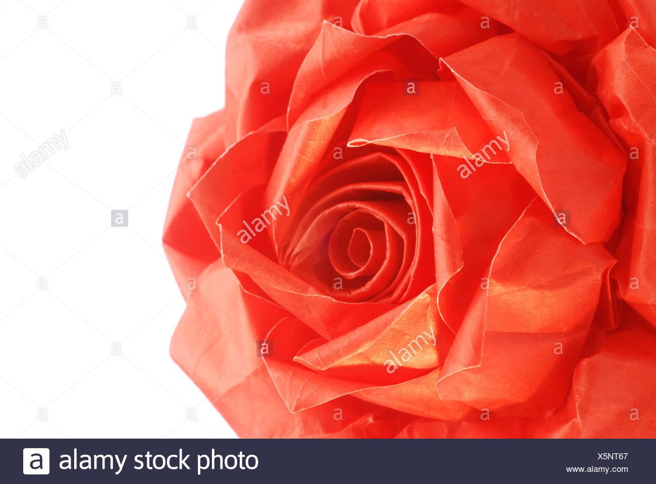 Paper rose, Origami - Stock Image