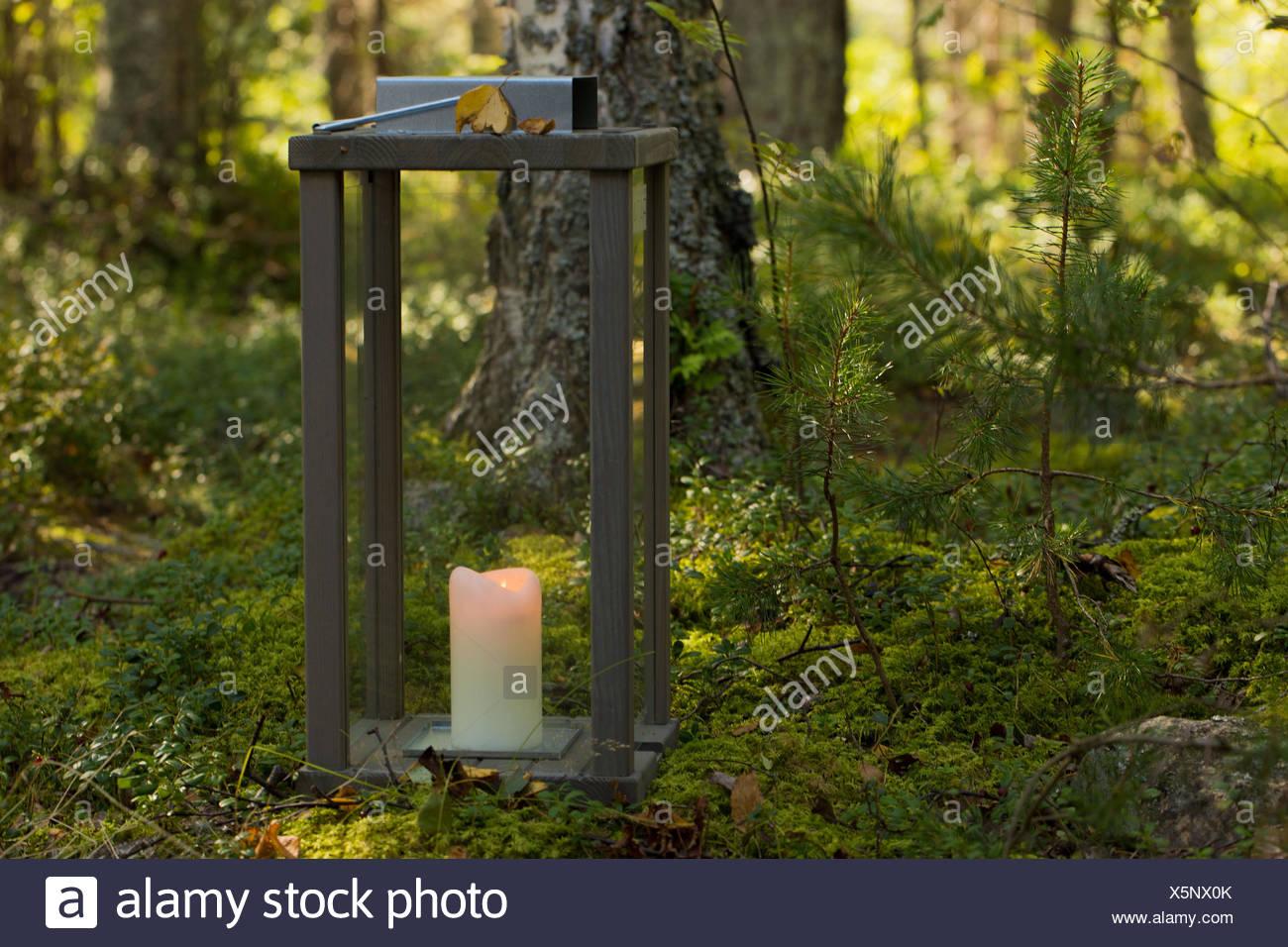 4 Season4 Season Autumnautumnbeautifulcandlecandle