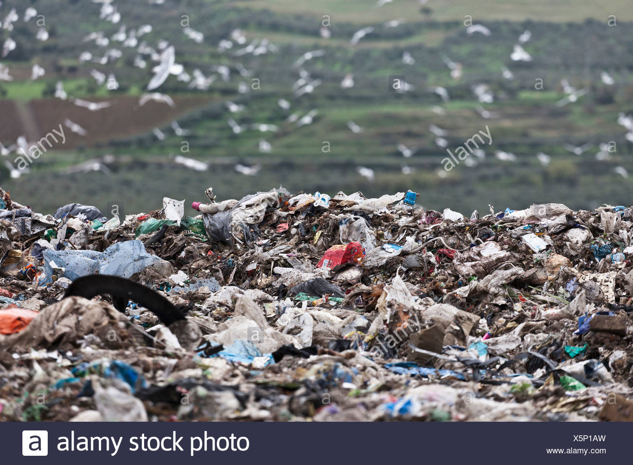 Landfill at garbage collection center Stock Photo