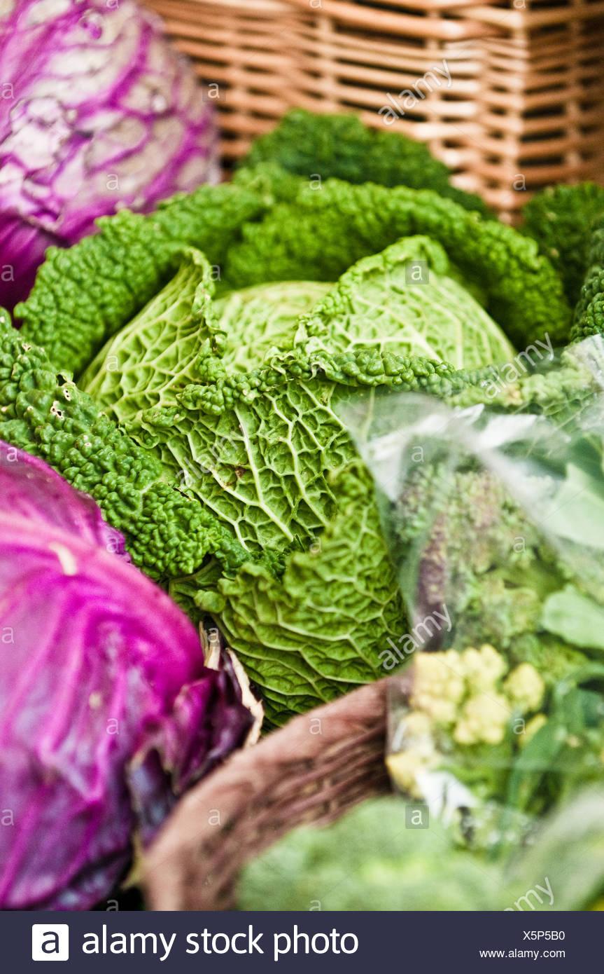 Fresh cabbage at farmer's market - Stock Image
