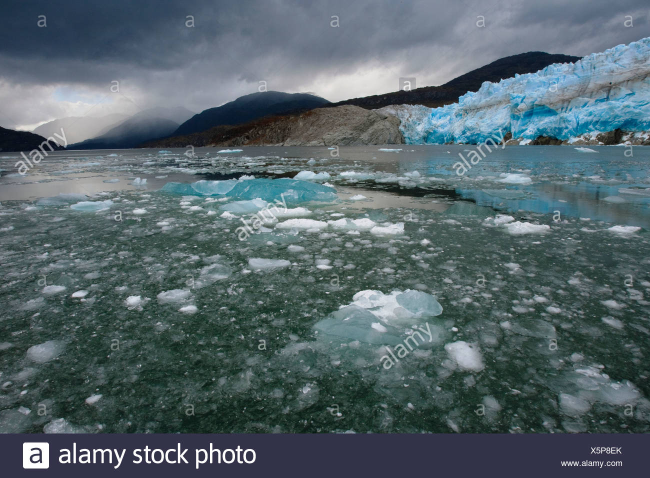 The retreating Iceberg Glacier in Bernardo O'Higgins National Park. - Stock Image