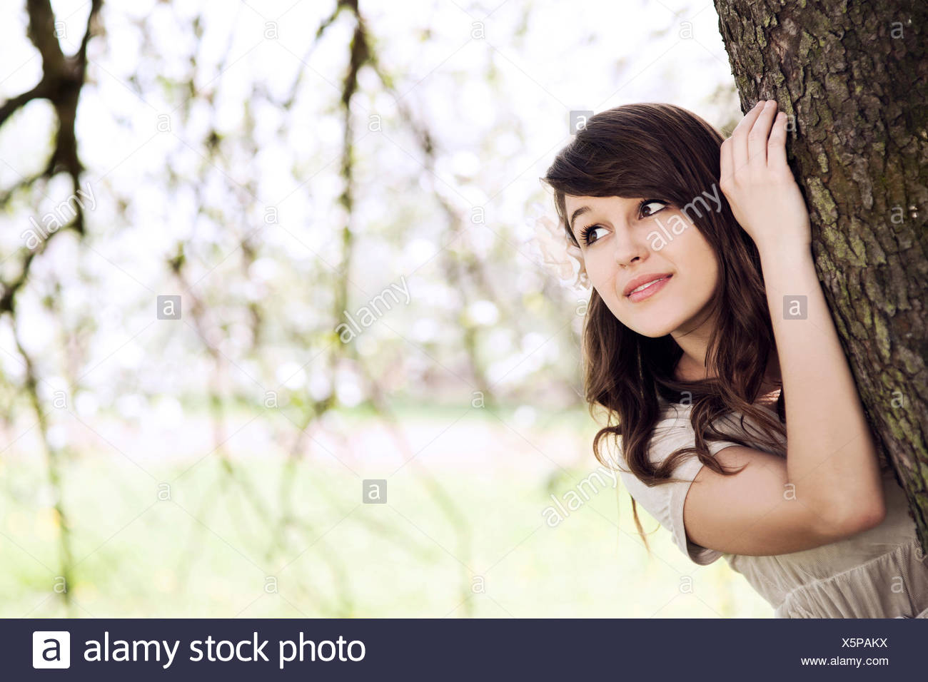 Beautiful young woman hiding behind tree trunk. Debica, Poland. - Stock Image