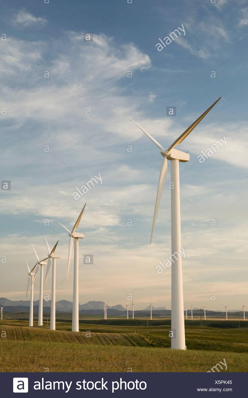 Pincher Creek, Alberta, Canada; Wind Turbines In A Row - Stock Image