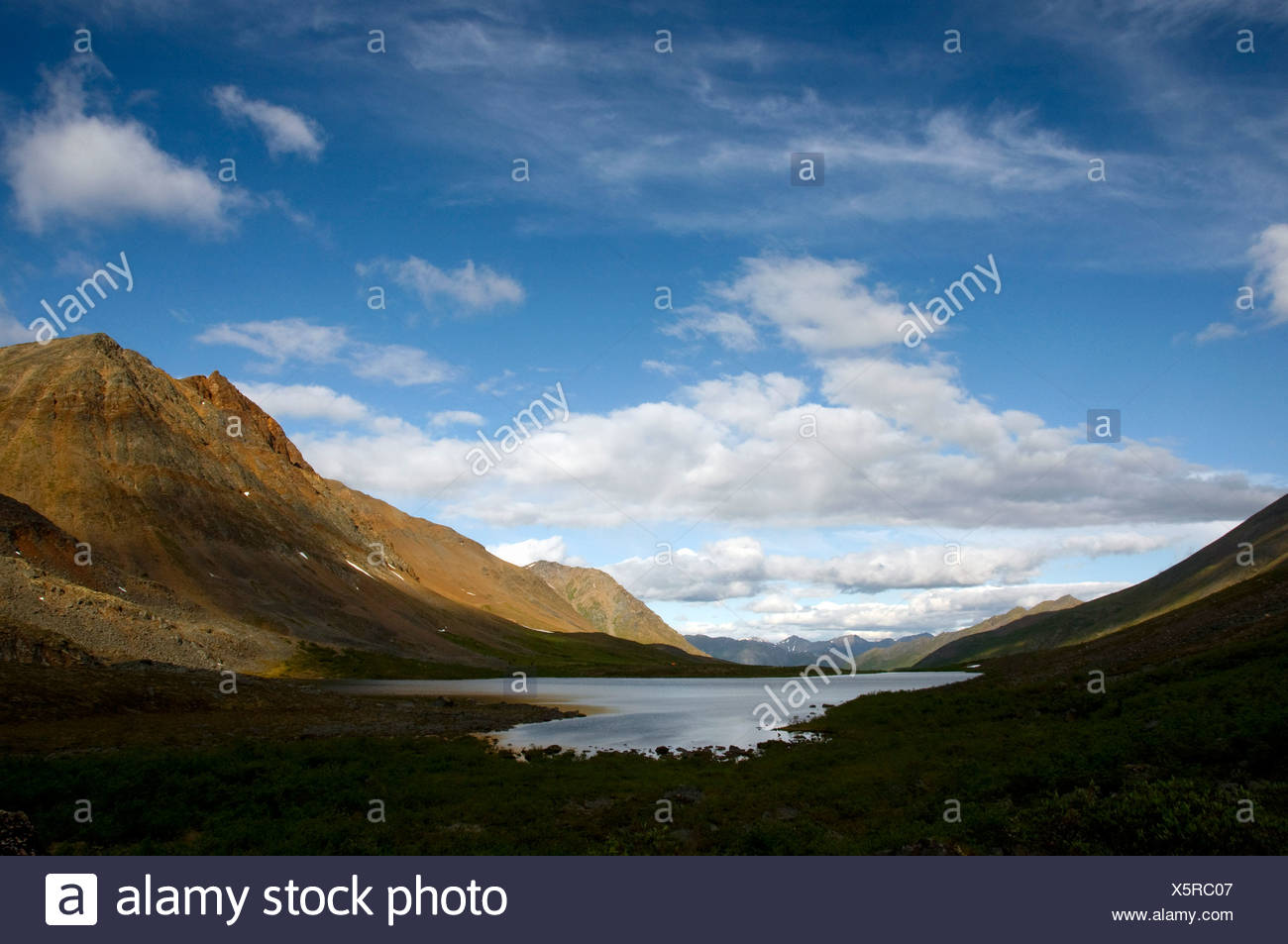 View of Grizzly Lake, Tombstone Territorial Park, Yukon Territory, Canada, Summer - Stock Image