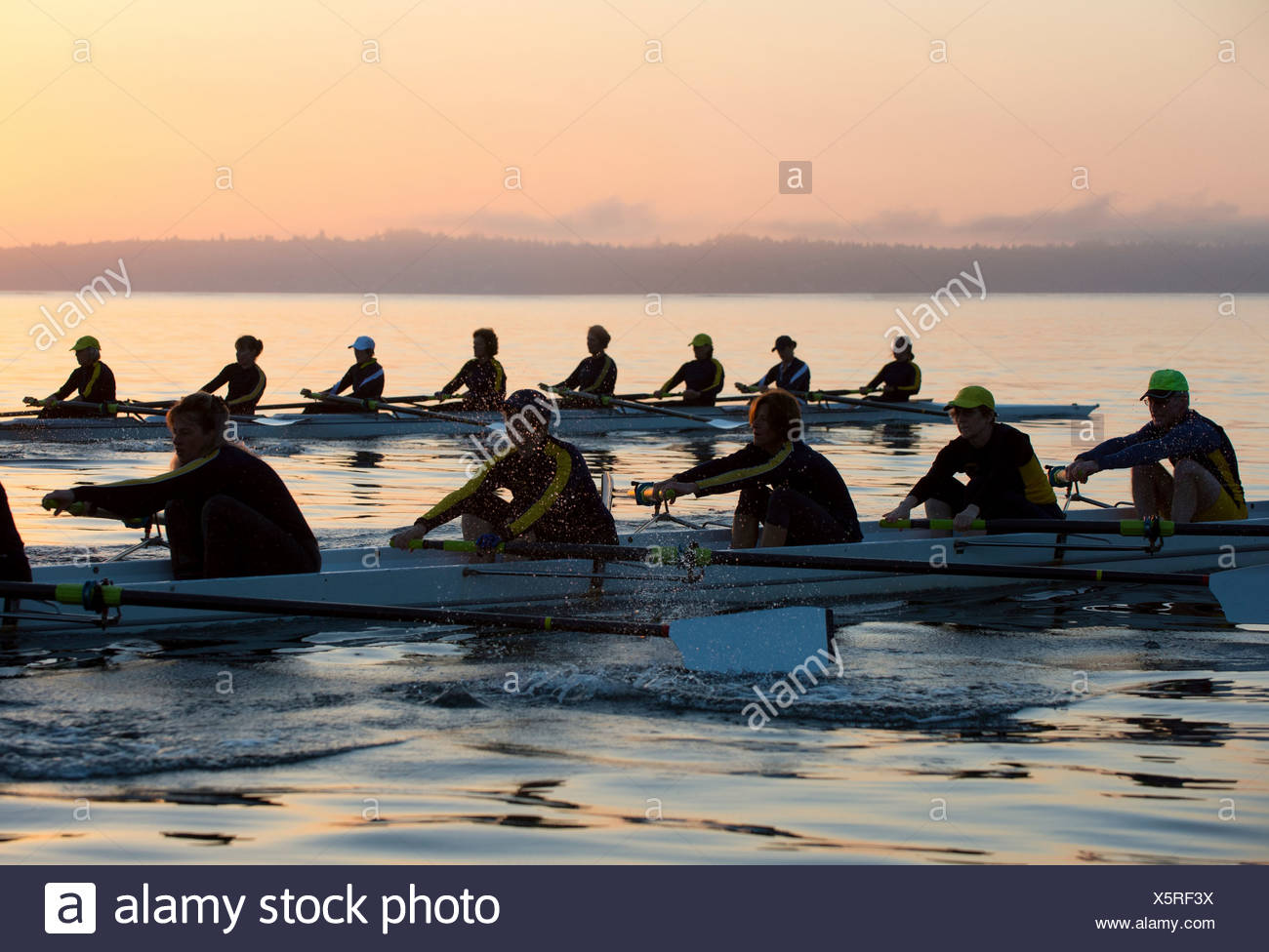 Fourteen people rowing at sunset - Stock Image