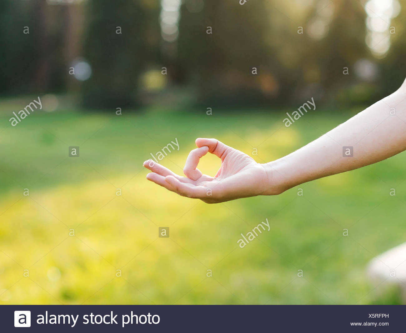 Hand of woman practicing yoga in forest - Stock Image