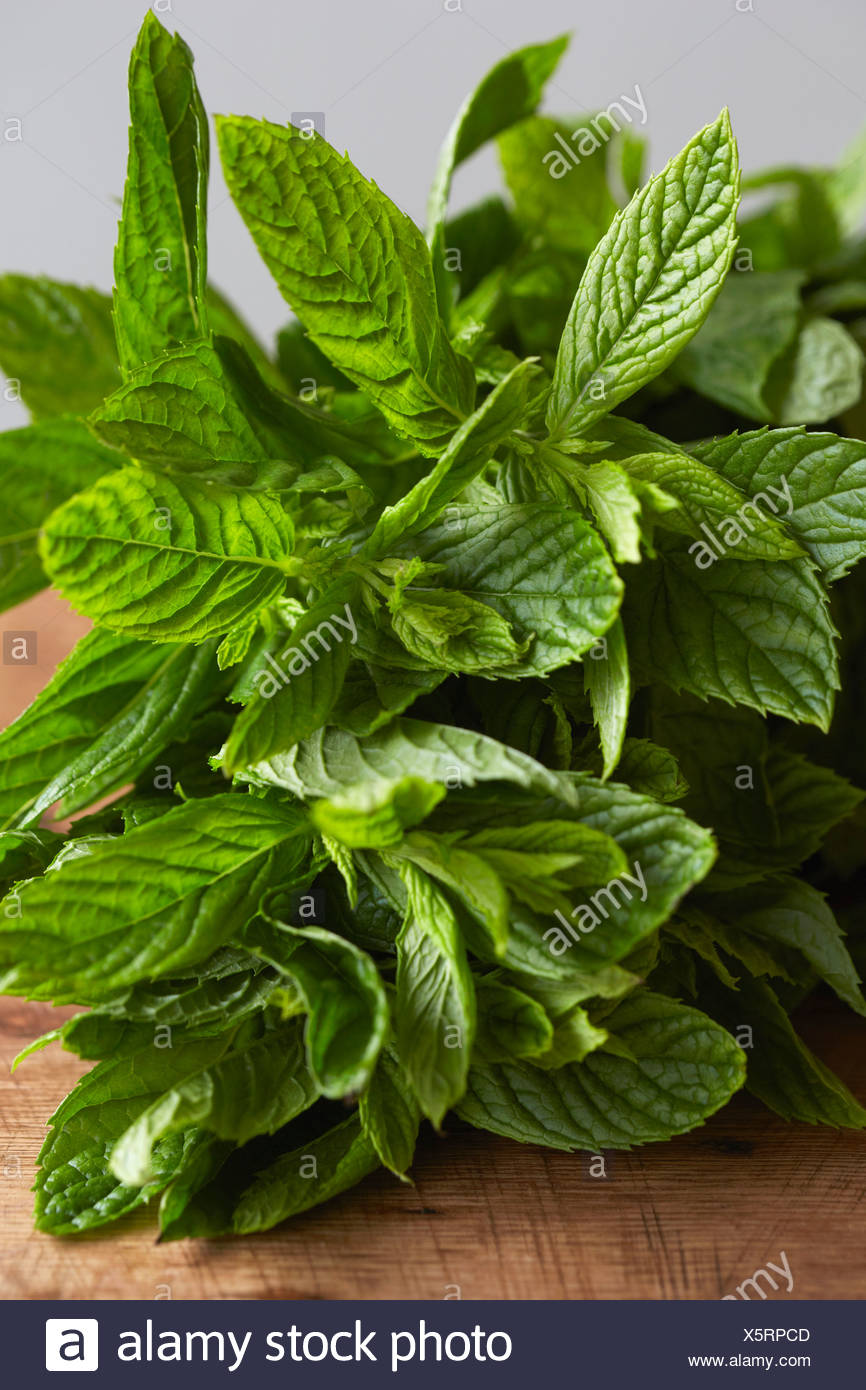 Sprig of mint on wooden board - Stock Image