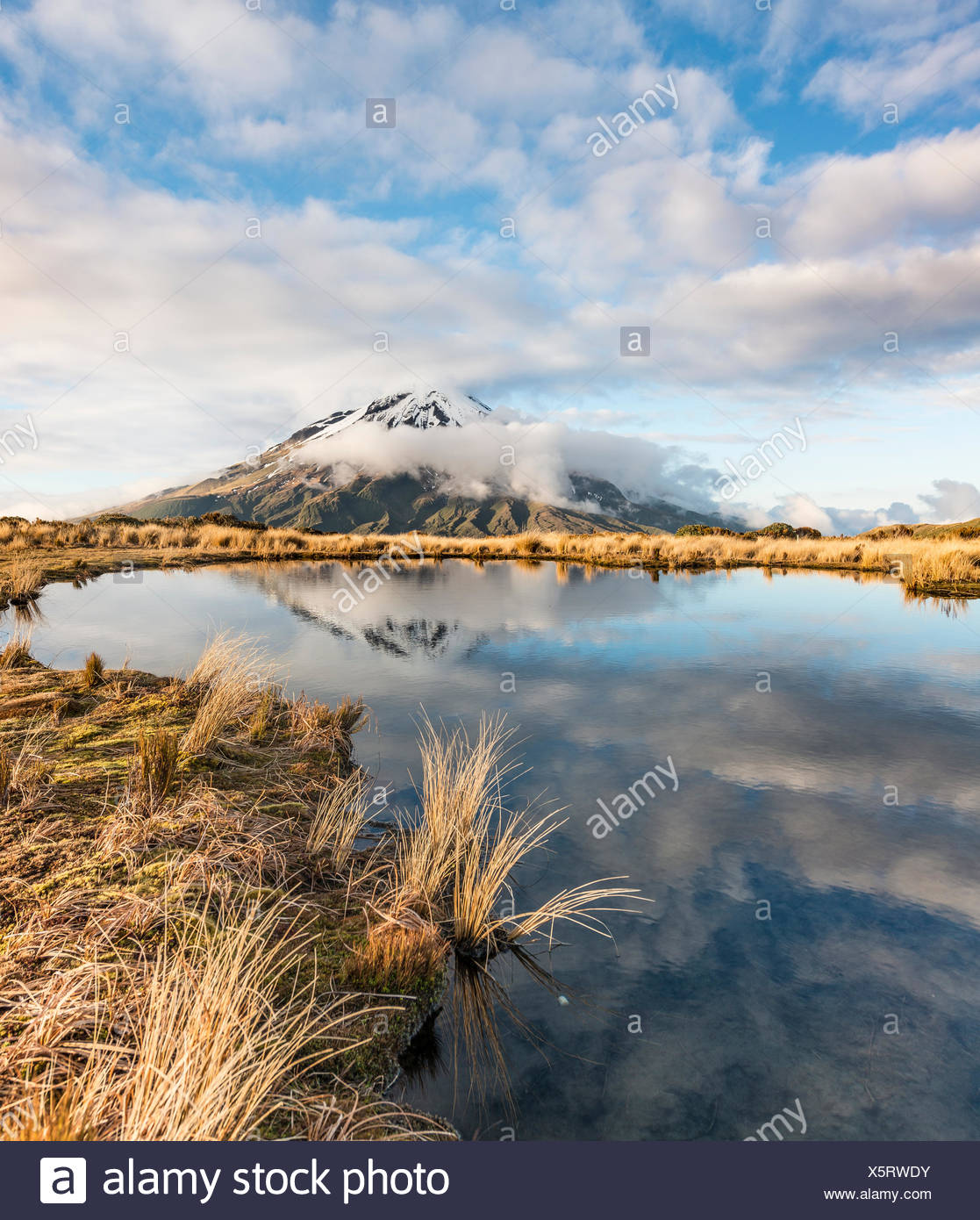 Reflection in Pouakai Tarn, stratovolcano Mount Taranaki or Mount Egmont, Egmont National Park, Taranaki, New Zealand - Stock Image
