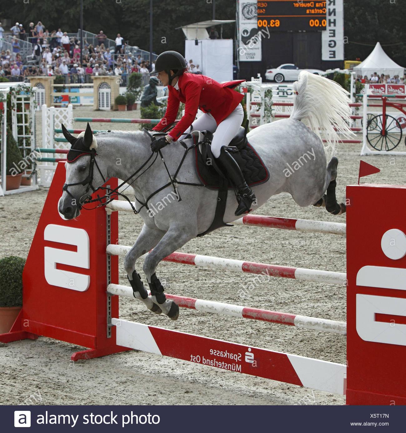 Horse-racing, German championships jumping and training in 2010 in Münster, Springreiterinnen, Tina Deuerer on Centara, - Stock Image