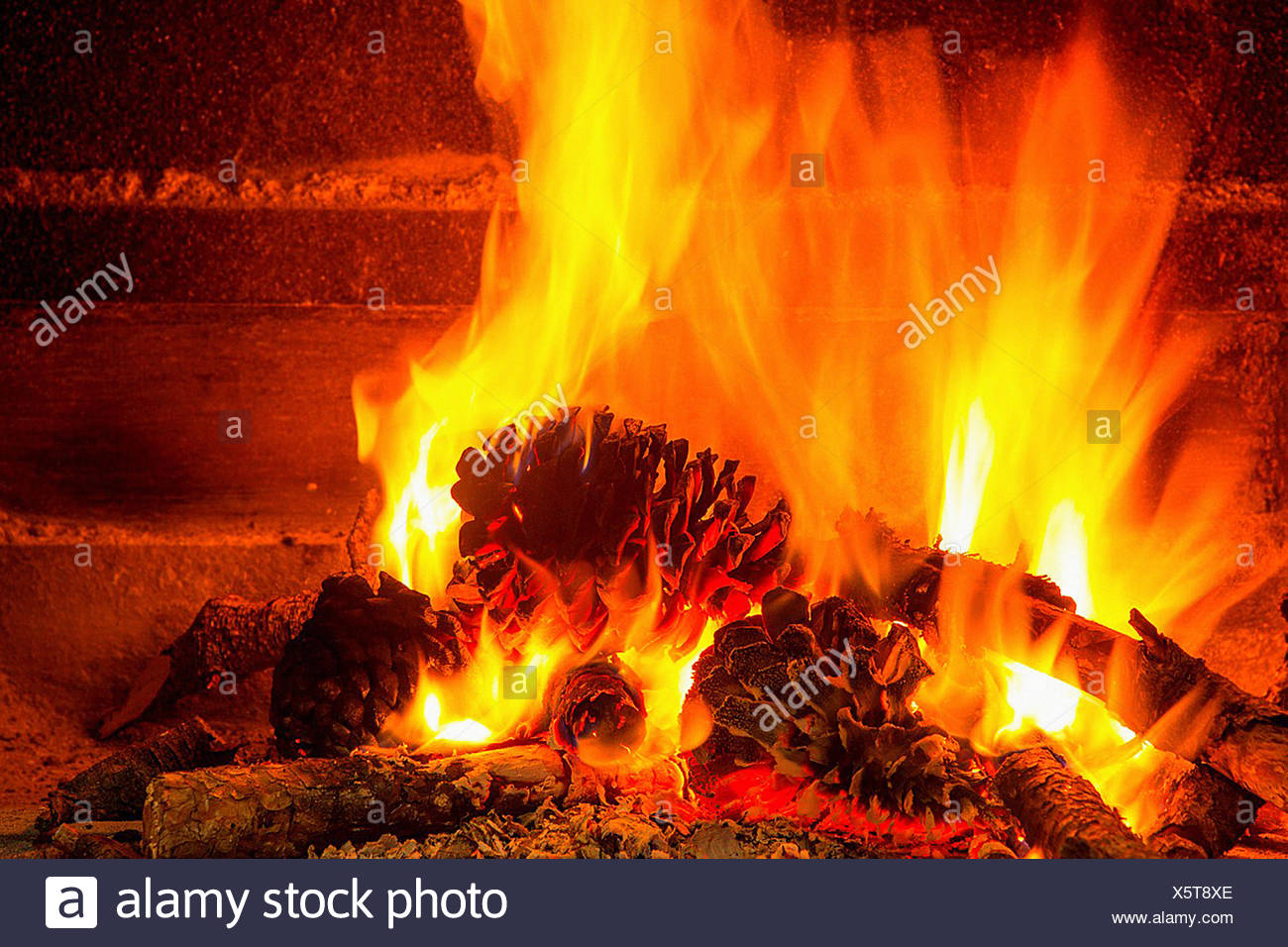 Burning Firewood In Chimney With Pine Cones And Fire Stock Photo