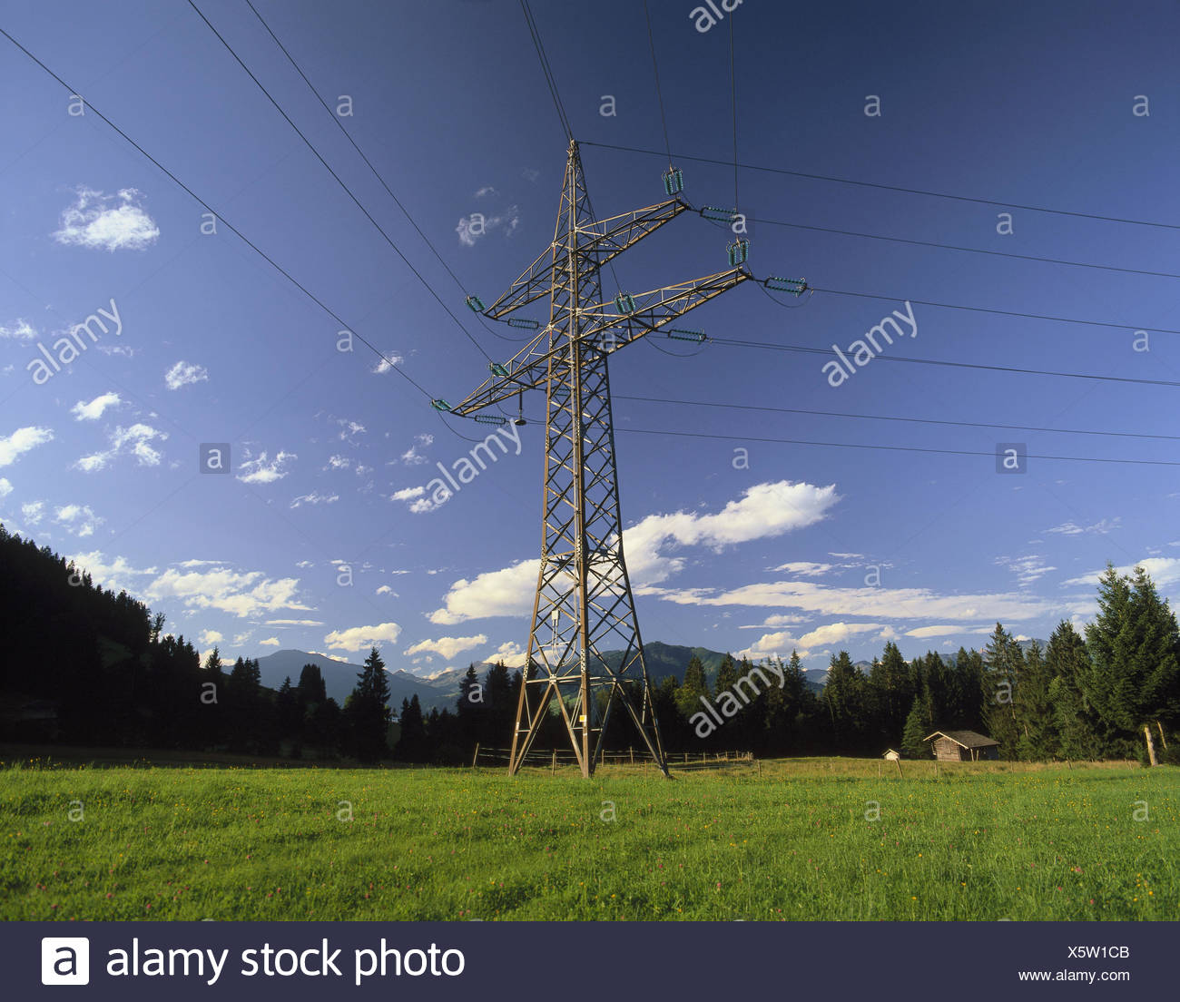 Meadow, power poles, nature, energy, electricity, current, masts, mast, circuits, power supply lines, power supply line, power supply, - Stock Image