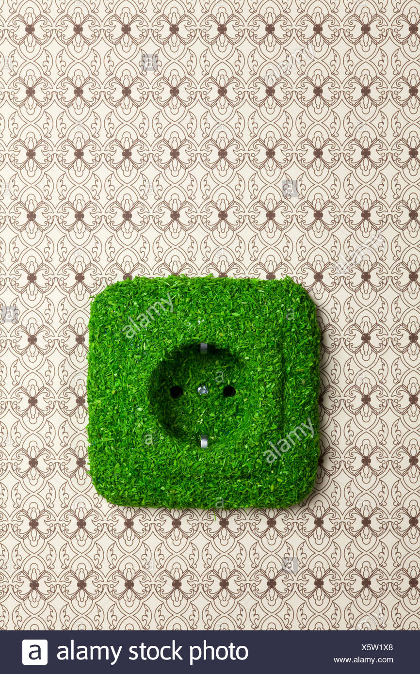 Energy saving electrical wall outlet covered in grass - Stock Image