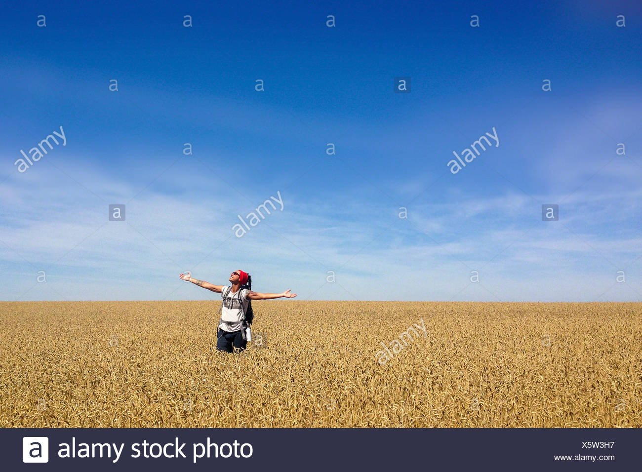 Man standing in wheat field with arms outstretched - Stock Image