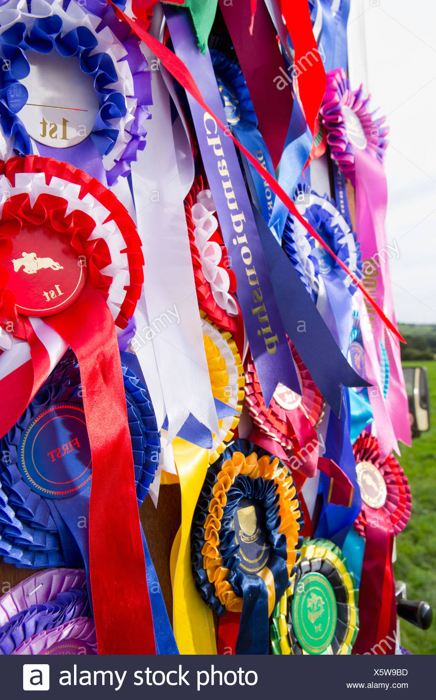 Close up of equestrian rosettes hanging on door - Stock Image