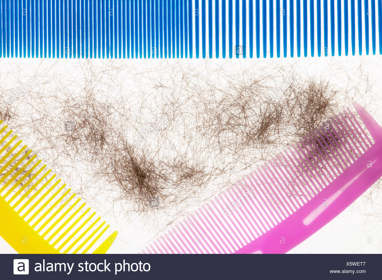 Plastic combs and hair clippings, elevated view - Stock Image