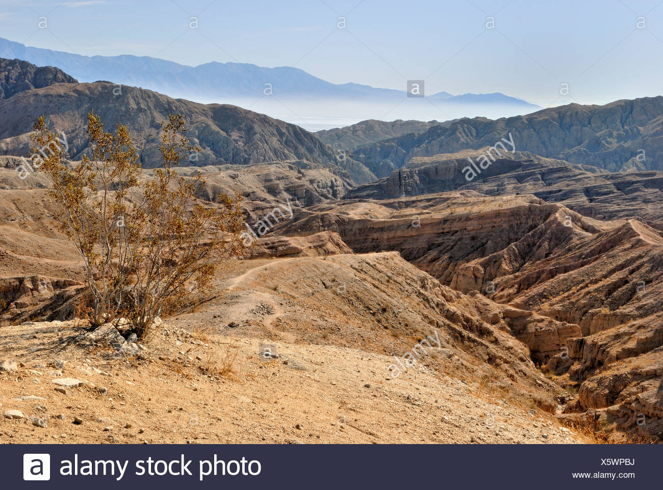 Hiking in the Mecca Hills, Indio, Southern California, California, USA - Stock Image