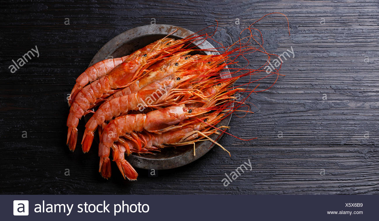 Raw fresh Prawn on metal plate on black burned wooden background copy space - Stock Image