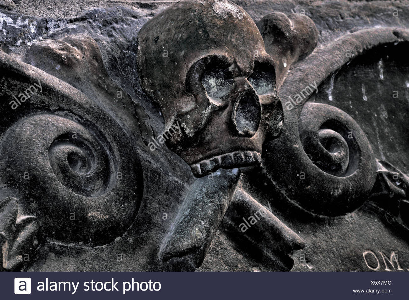 Spain, Way of St. James, death's-head relief in the cathedral of Jaca in Aragon, - Stock Image