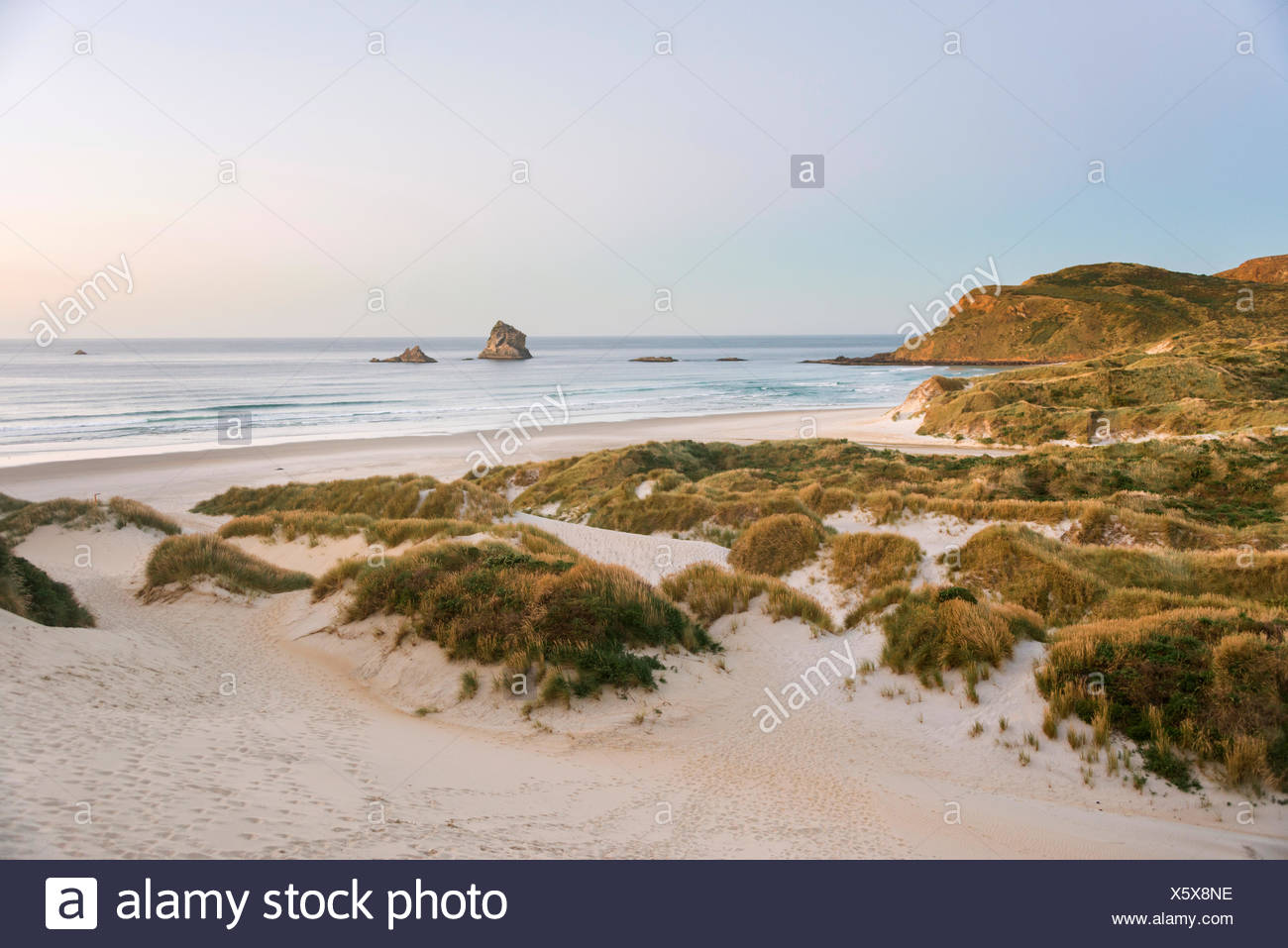 Sandy beach, dunes, Sandfly Bay, Dunedin, Otago, Otago Peninsula, Southland, New Zealand - Stock Image