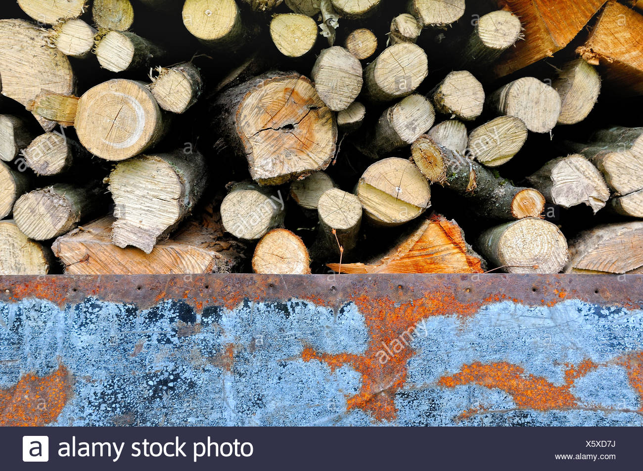 Covered firewood with an old sheet metal Stock Photo