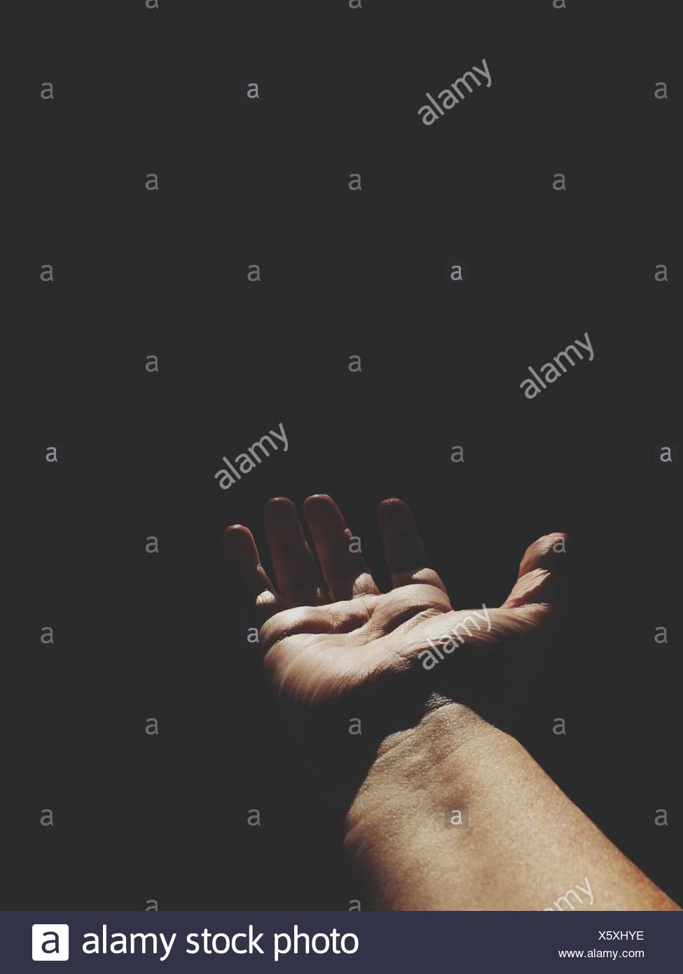 Cropped Image Of Arm In Sunlight - Stock Image