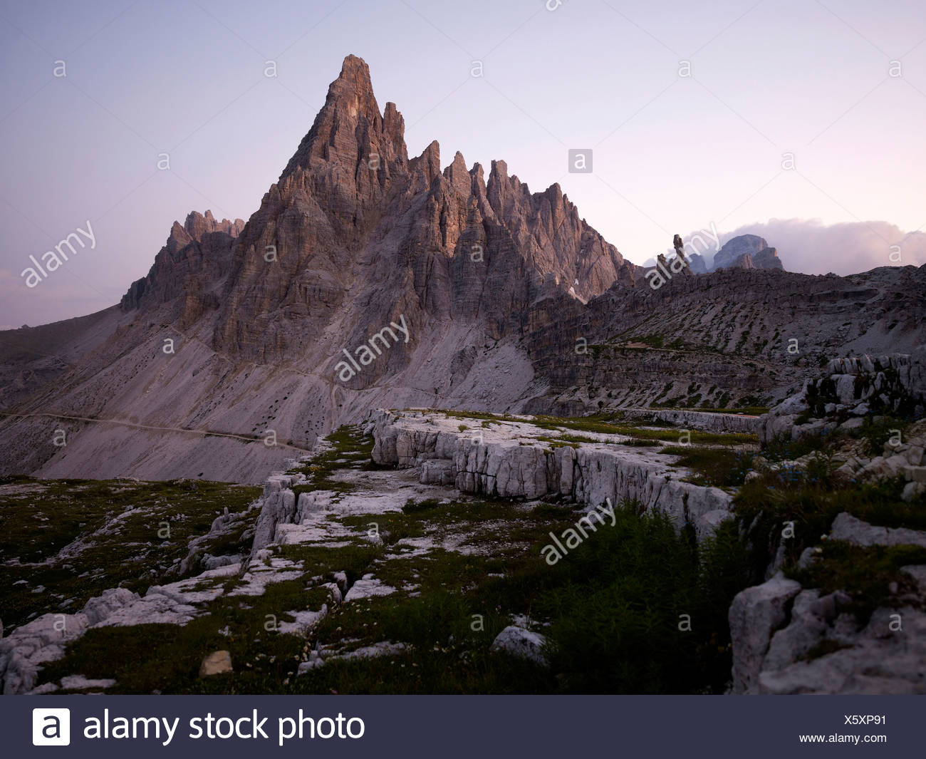 Mt Paternkofel at dawn, Sexten Dolomites, Dolomiti di Sesto National Park, Hochpustertal, High Puster Valley, South Tyrol, Italy - Stock Image