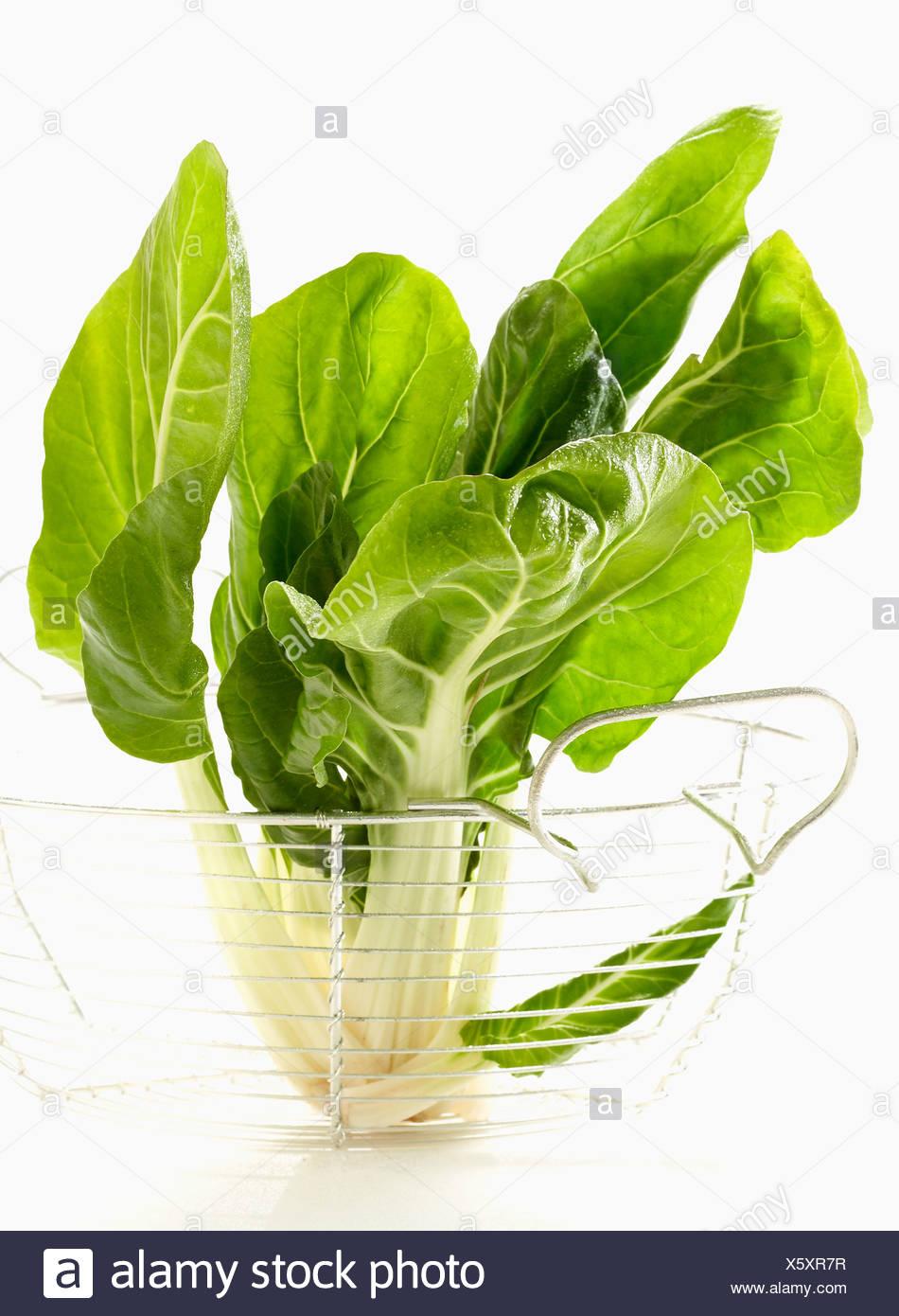 Green beets Stock Photo