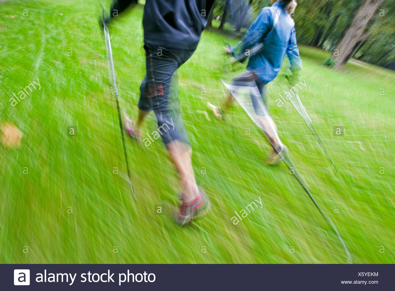 Motion studie of two nordic walker with sticks and sportive clothing walking on a green meadow in the English Garden in Munich Stock Photo