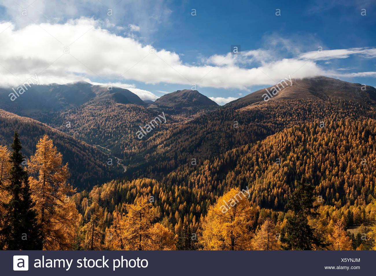 Herbst im Nationalpark Nockberge, Kärnten, Österreich Stock Photo