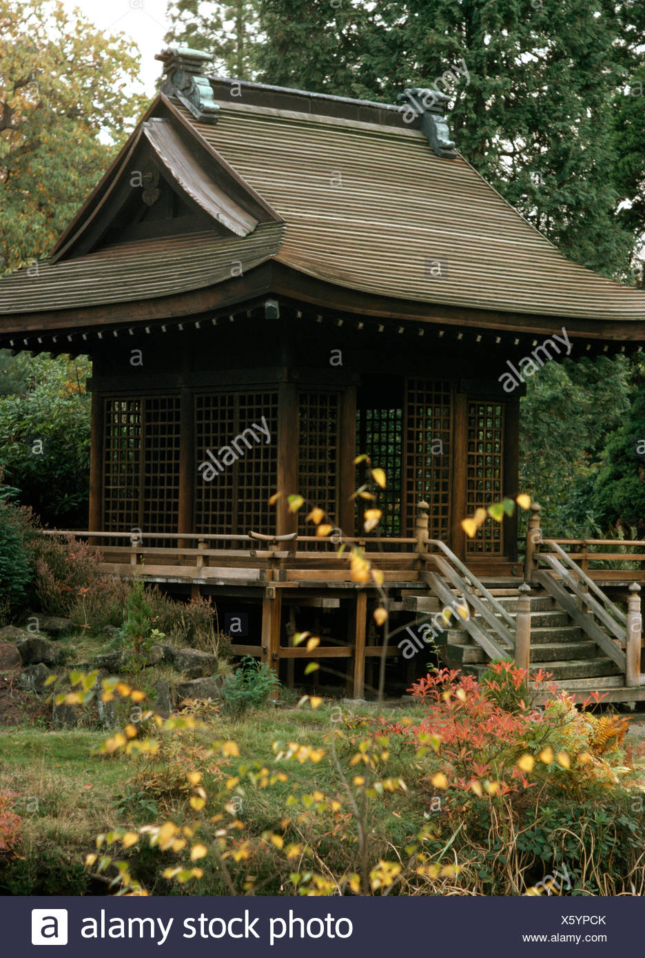 Wooden steps up to Chinese style pavilion in a large country garden in autumn - Stock Image