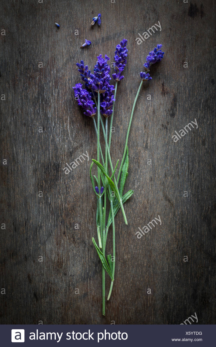 Lavender twigs on wooden background. Top view - Stock Image