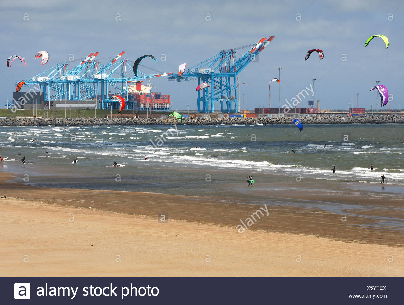kitesurfers at the beach of Blankenberge with the harbour of Zeebrugge in the background, Belgium, West Flanders, Zeebrugge - Stock Image