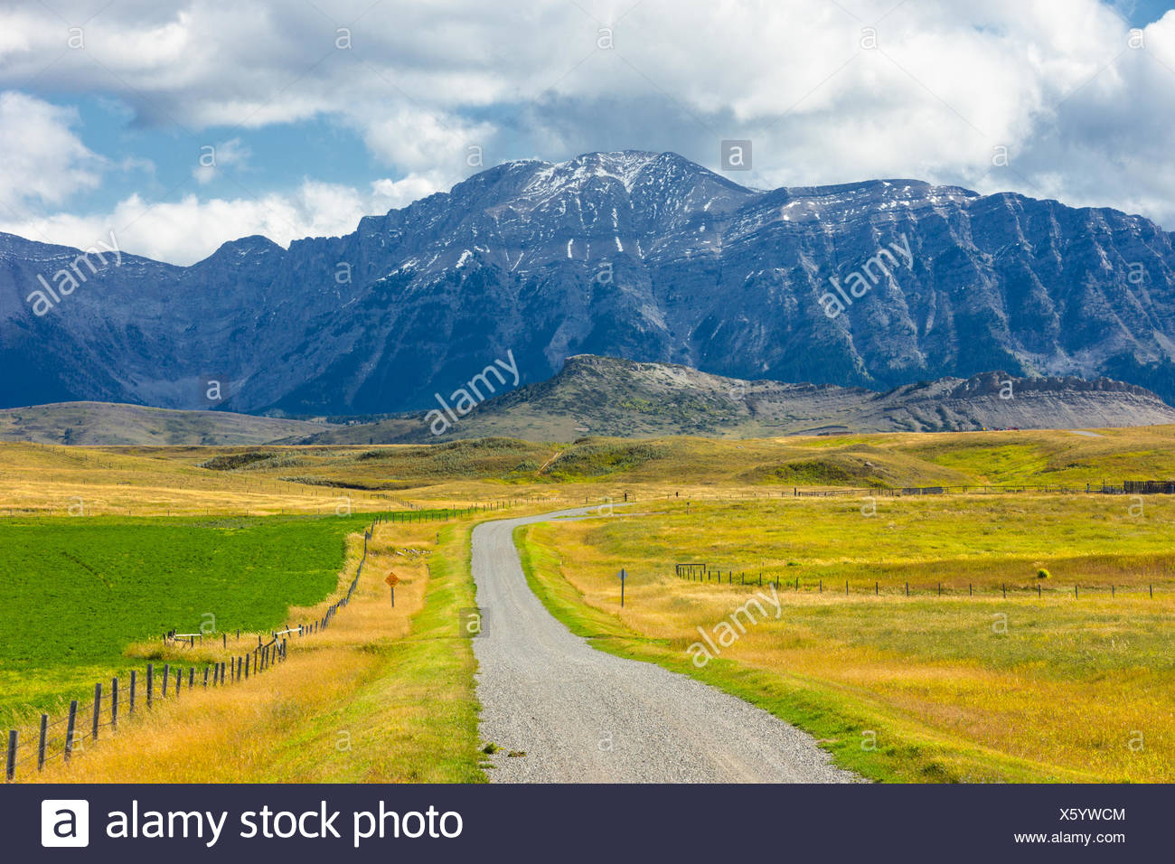 Gravel road, foothills, Longview, Alberta, Canada - Stock Image