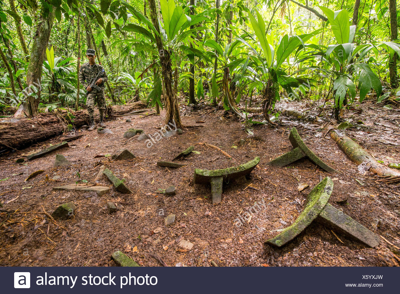 A cache of at least 51 artifacts on the jungle floor in the Mosquitia jungle in Honduras. - Stock Image