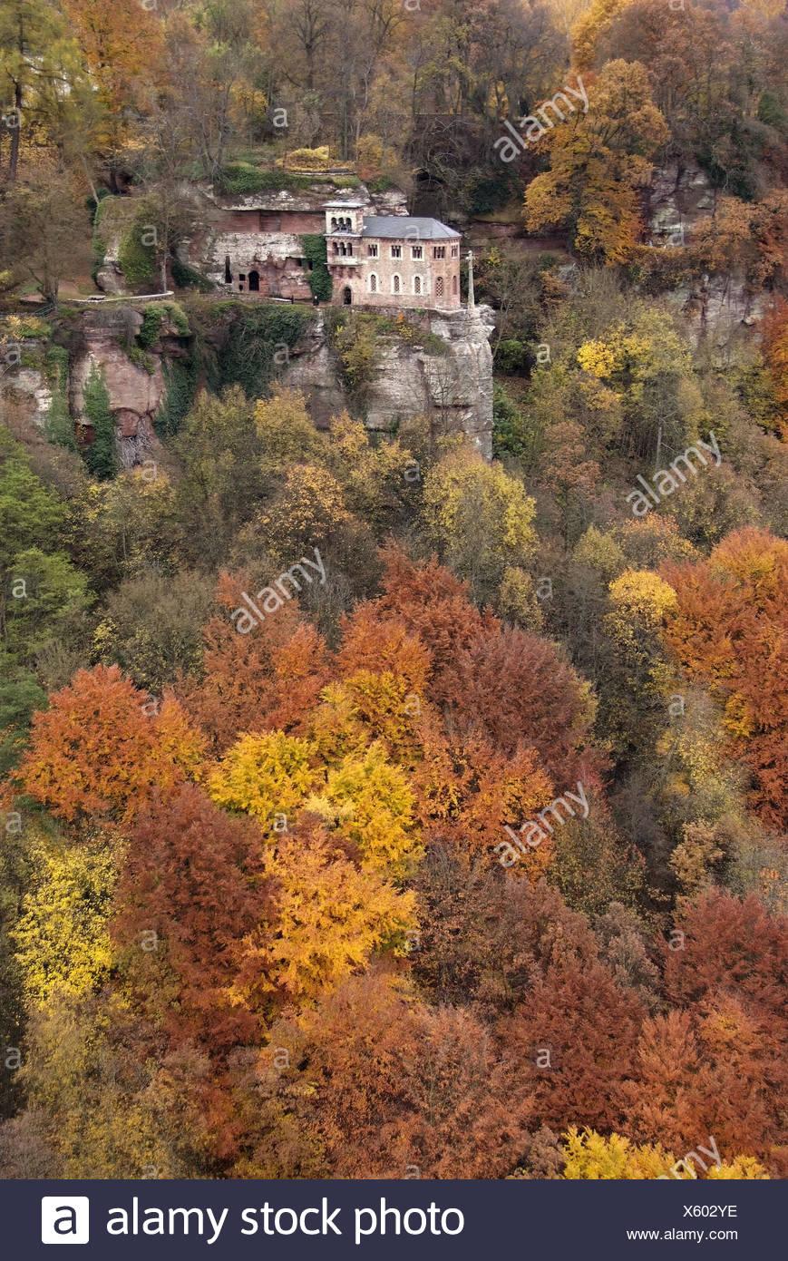 Germany, Rhineland-Palatinate, Kastel-Staadt, Klaus, autumn wood, Stock Photo