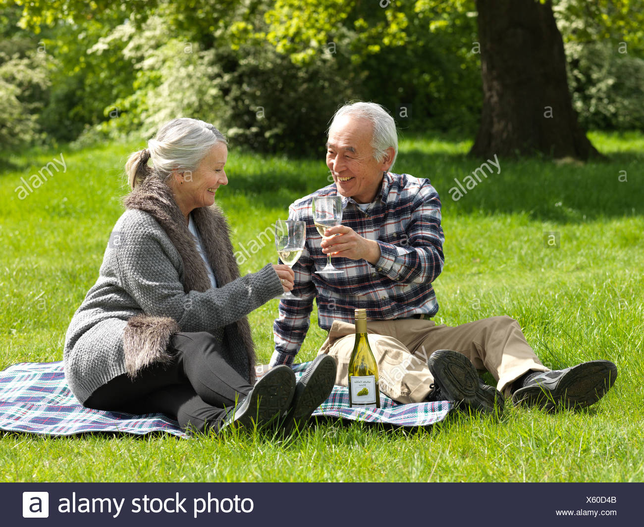 Older couple toasting each other - Stock Image