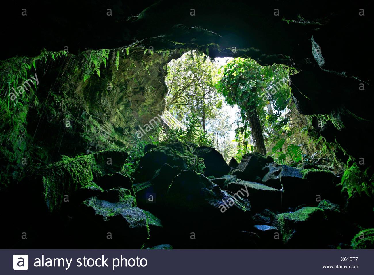 Kaumana lava caves, Hilo, Big Island, Hawai'i, Hawaii, USA - Stock Image