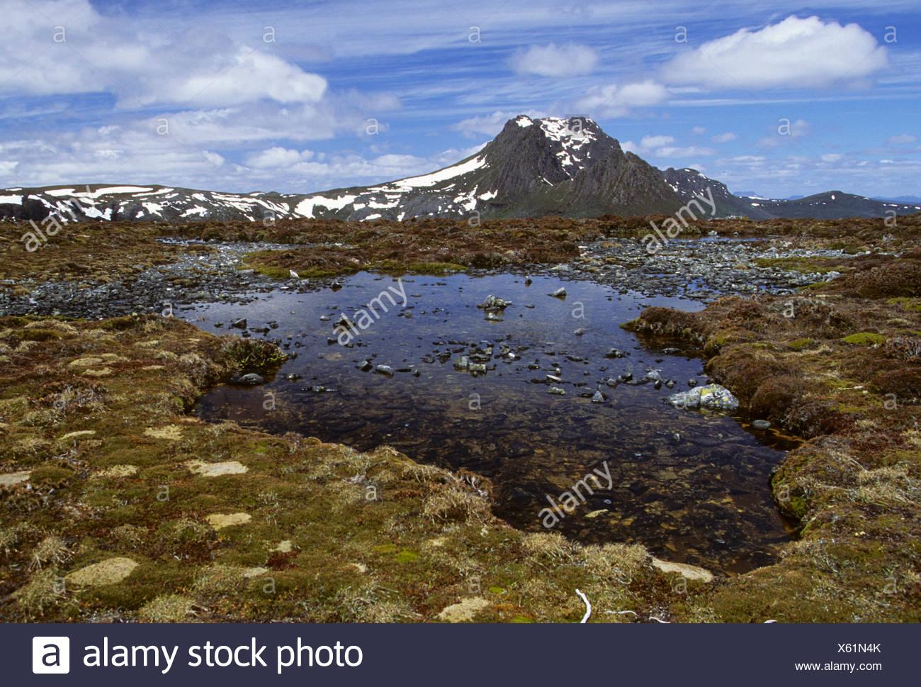 Cradle Mountain National Park, Lake St. Clair, Tasmania, Australia - Stock Image