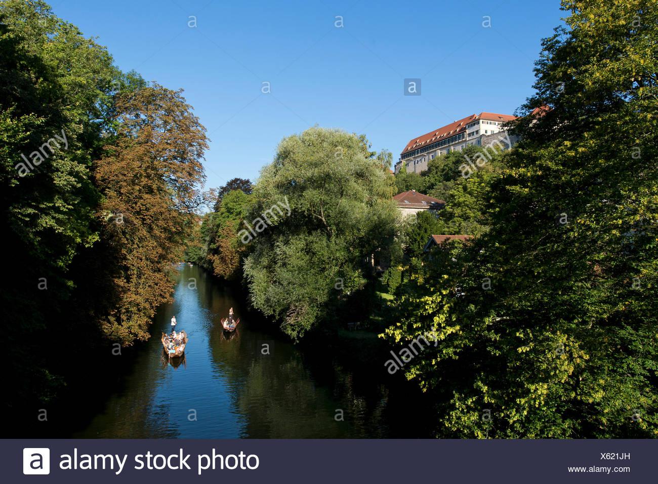 Punts floating on the Neckar river, castle, Tuebingen, Baden-Wuerttemberg - Stock Image
