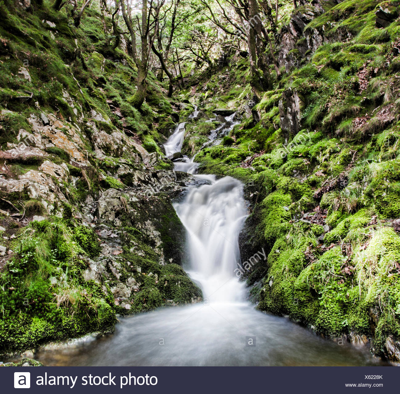 Flowing river - Stock Image