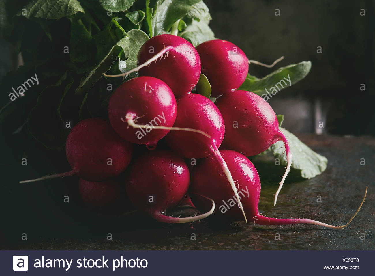 Fresh organic ripe young radish bundle with leaves over dark texture background. Close up. Selective focus, toned image - Stock Image