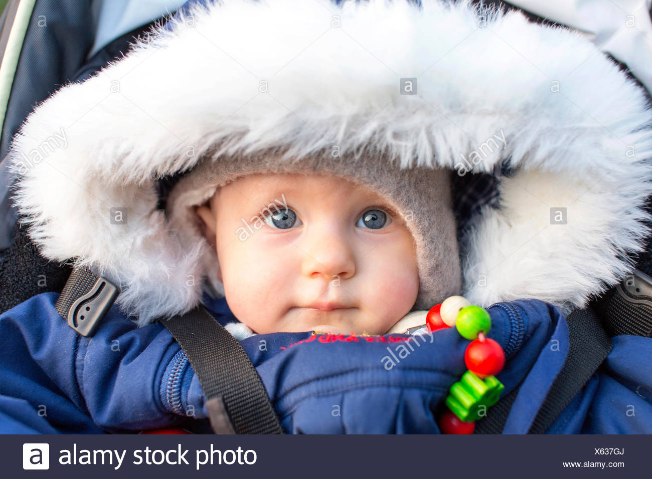 Baby, 9 months, wearing a thick jacket - Stock Image